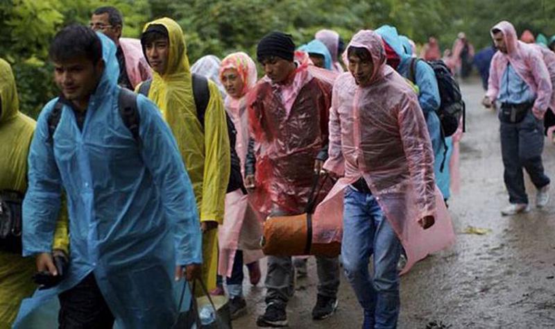 bhizbjeglice