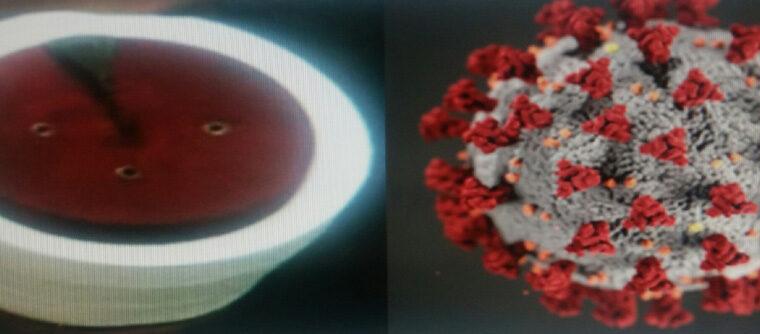 Konstitutivni BH coronavirus