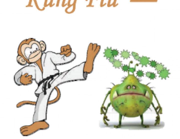 Kung Fu predsjednik