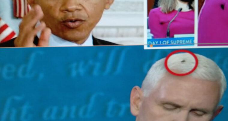 Američko 'muhanje' postaje viralno ali i odvratno